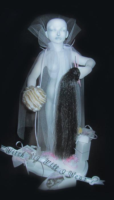 Witch Wig Will I Wear? - Diana Lence Crosby